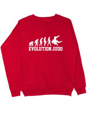 Свитшот Judo Evolution красный