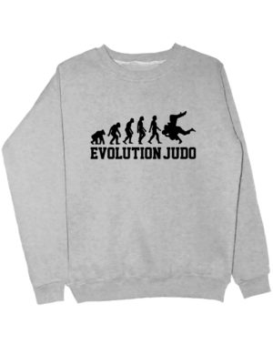 Свитшот Judo Evolution серый