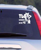 Наклейка на авто Ты извини если чё