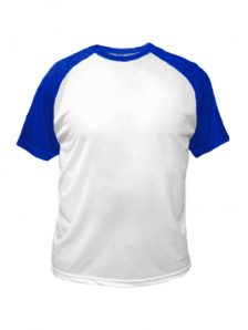 Футболка мужская. Материал полиэстер, плотность 140 гр. Классический мужской, свободный крой, с коротким рукавом и круглым мягким воротом. Облегченная перфорированная ткань из полиэстера позволяет пропускать воздух, обеспечивая оптимальный теплообмен и вентиляцию. Идеально подходят для спортивной формы. Цвет бело-синий
